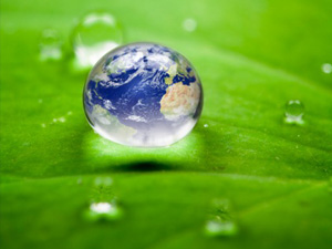 Sustainable Investing: The Advantages Over Socially Responsible Investing
